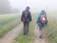 IMG_1077 Im Nebel nach Schweinberg